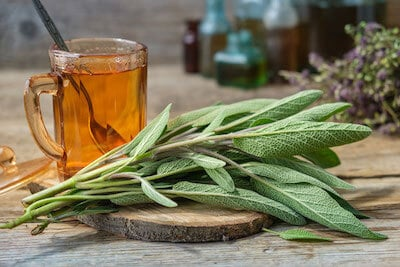 infusion sauge officinale