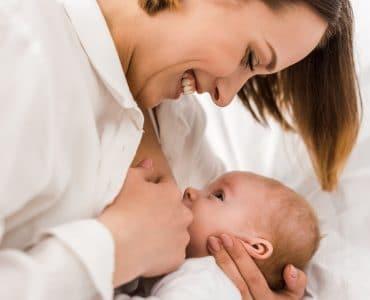 fenugrec allaitement